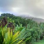 New York und Costa Rica Reise Tagebuch – Von Pferden, Wasserfällen und Indio-Dörfern am Vulkan Arenal