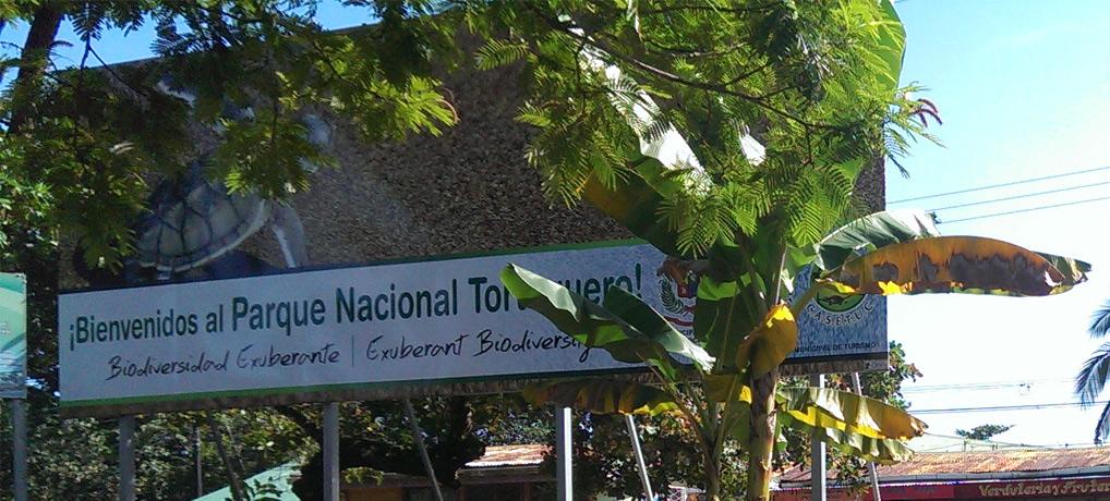 tortuguero tour, dorf, costa rica, schildkröten, meer, abenteuer, urwald