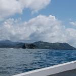 New York und Costa Rica Reise-Tagebuch – Sámara: Delfine und Traumstrände