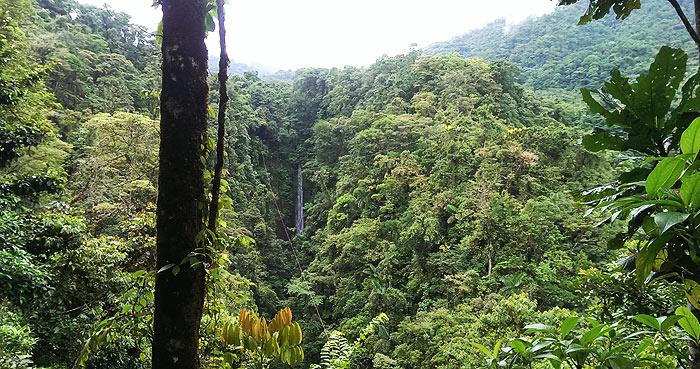 costa rica, wasserfall, vulkan arenal, canopy, nebelwald