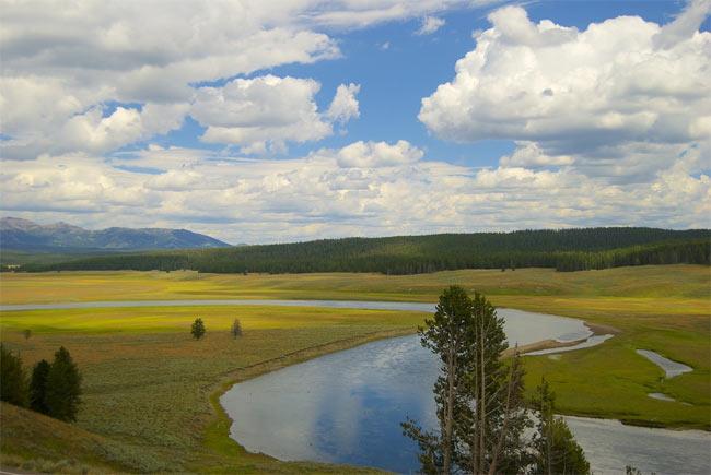 yellowstone nationalpark in den usa, wyoming, billige flüge, singlereisen