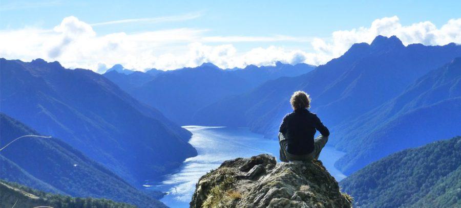 Neuseeland Reiseführer für deinen Singleurlaub, Combobook, interaktiv
