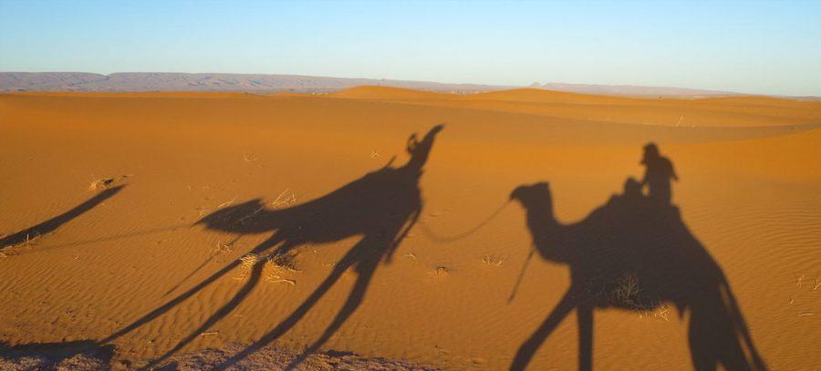 singleurlaub, reisen, karawane, intrepid travel, solo urlaub, gruppenreisen