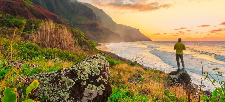 solo urlaub, travel, hacks, hawaii, singlereisen, alleine reisen