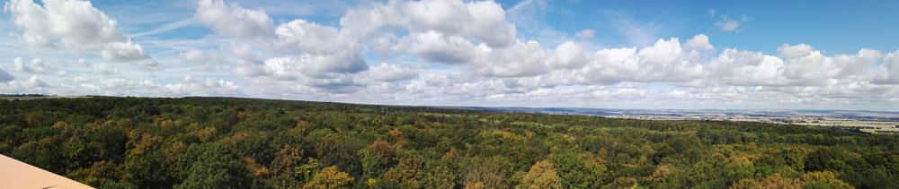 baumkronenpfad thüringen, hainich, nationalpark