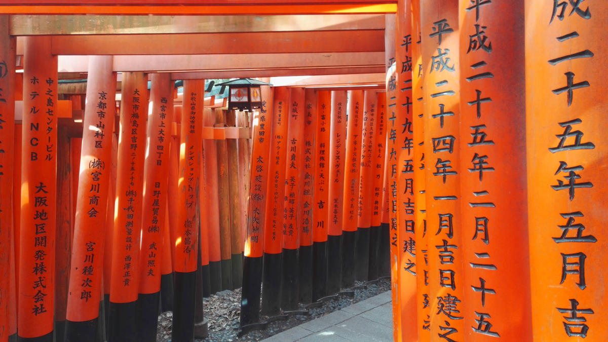 inari torii kyoto japan reise tipps